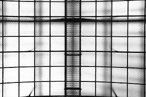 monochrome lines - otto