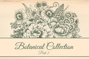 Botanical Flowers Collection. Part 2