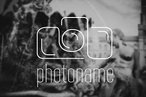 Simple Photo Logo