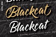 Blackcat Script // Layered Fonts