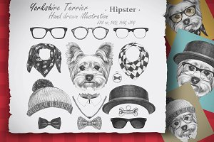 Yorkshire Terrier / Hipster
