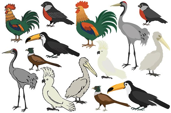 Vector birds in Illustrations - product preview 2