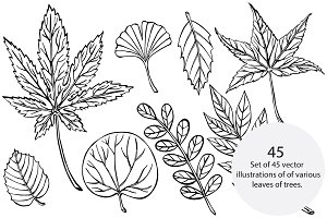 Vector Foliage