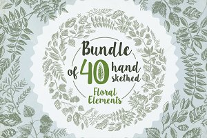 40 handsketched floral elements