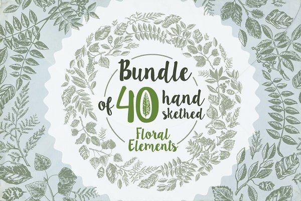 40 handsketched floral elements
