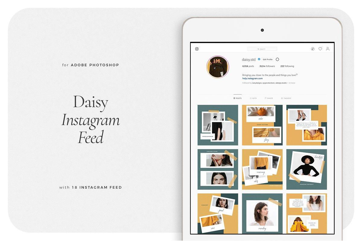 DAISY Instagram Feed