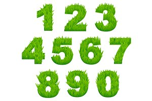 Grass numbers and digits