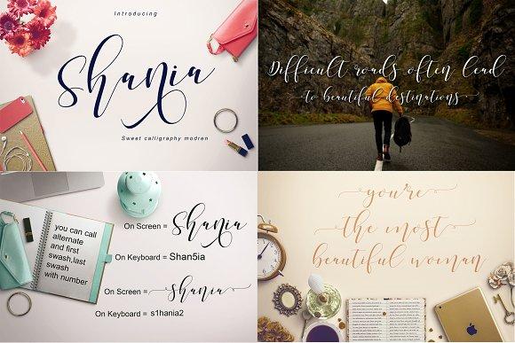 Best Seller Font Bundles in Script Fonts - product preview 2