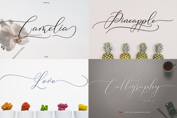 Best Seller Font Bundles in Script Fonts - product preview 4