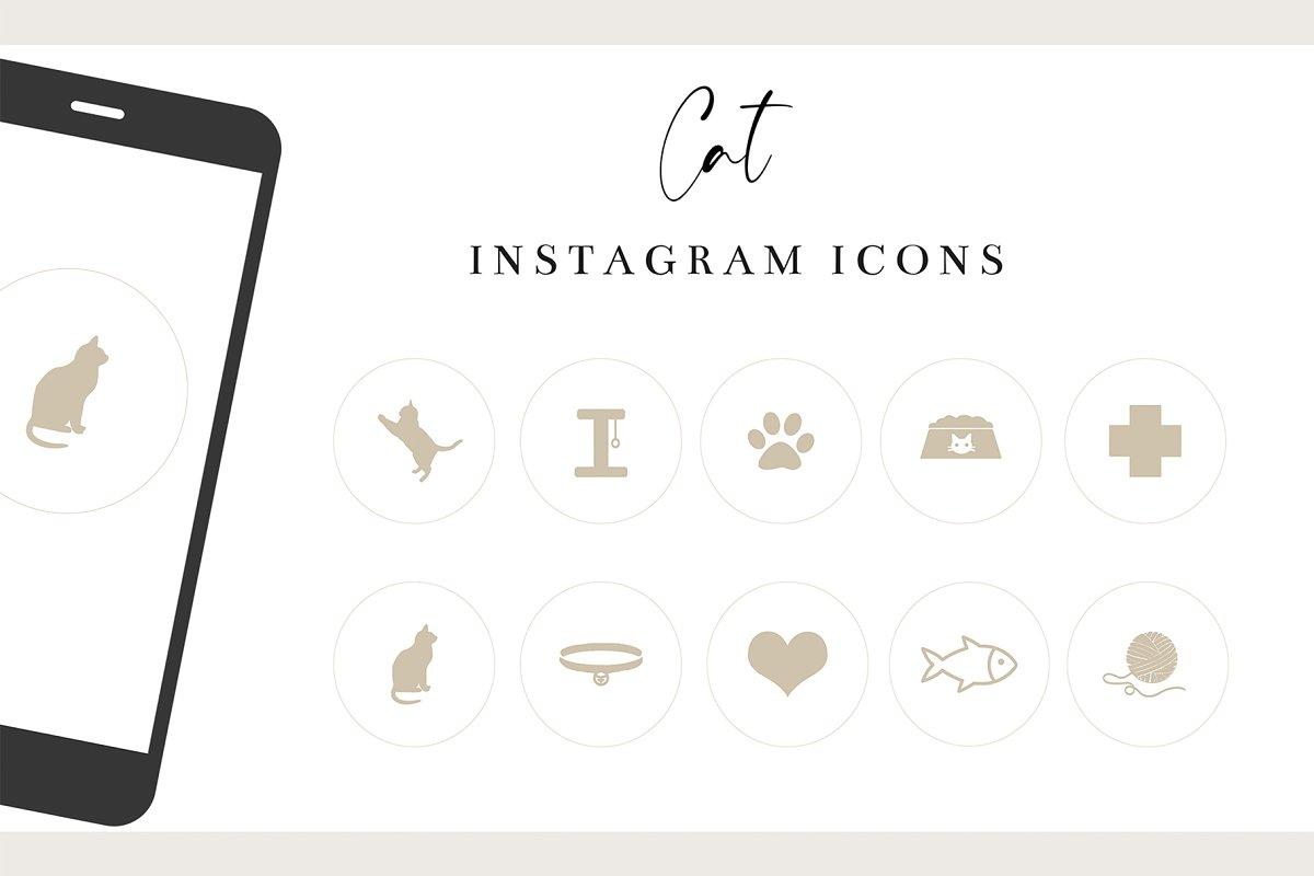 Cat Instagram Story Highlights
