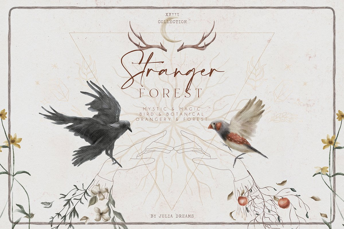 Stranger Forest Collection in Illustrations