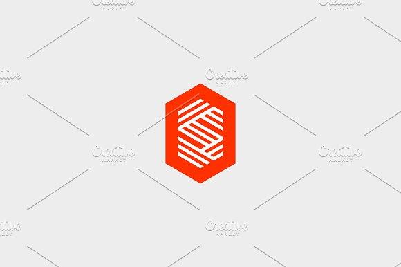 Letter S logo icon vector design.