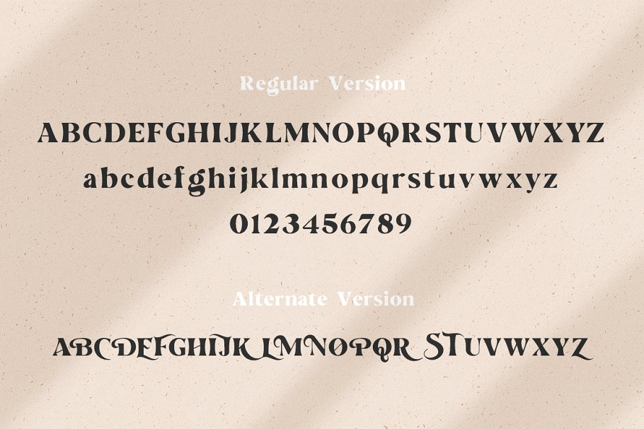 The Love For Money Font Duo in Sans-Serif Fonts - product preview 5