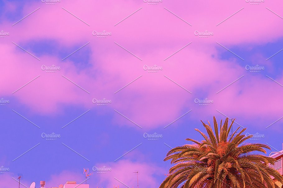 Fashion Aestheticwallpaper Phone High Quality Nature Stock Photos Creative Market