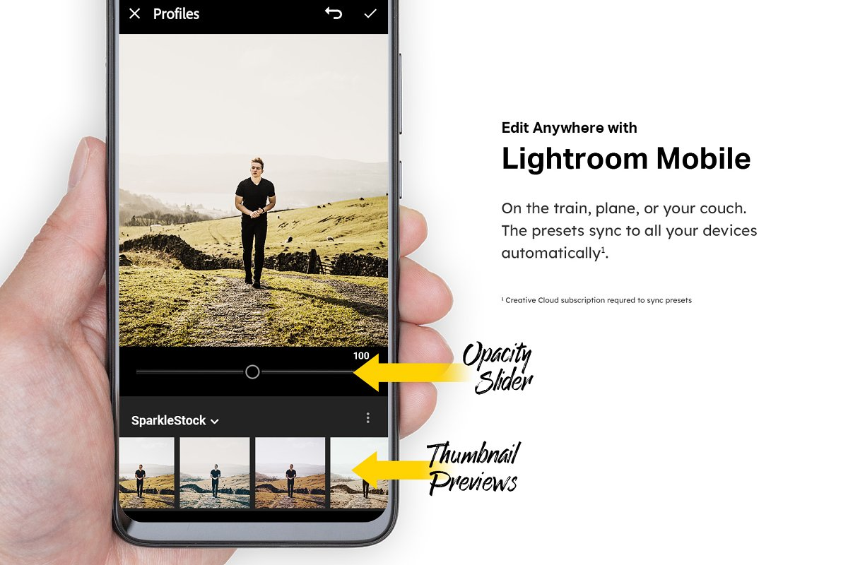 50 Instant Photo Lightroom Presets in Add-Ons - product preview 6