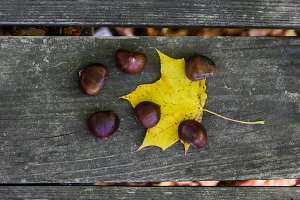 Chestnuts outside on wooden table