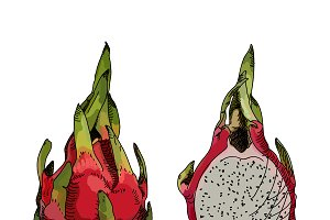 Dragon fruit or pitahaya.