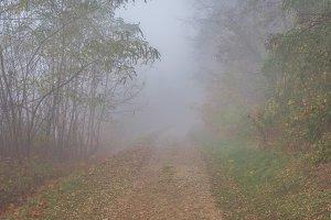 Mystical fog 2