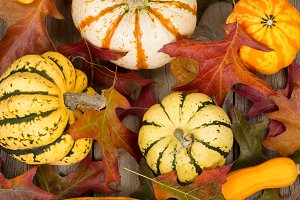 Seasonal Vegetables for Thanksgiving