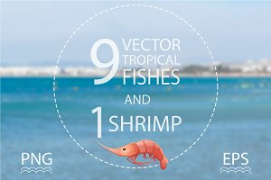 Vector tropical fish and shrimp set