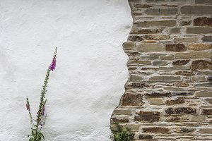 UK plaster Stone