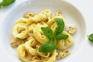 Delicious Meat Cappelletti