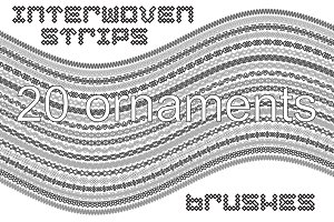 20 interwoven strips brushes