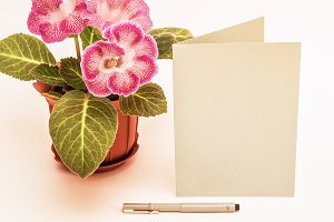 Mockup. Postcards, Gloxinia and pen.