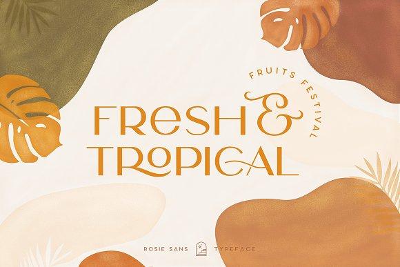 Rosie Sans - Gorgeous Typeface in Sans-Serif Fonts - product preview 43