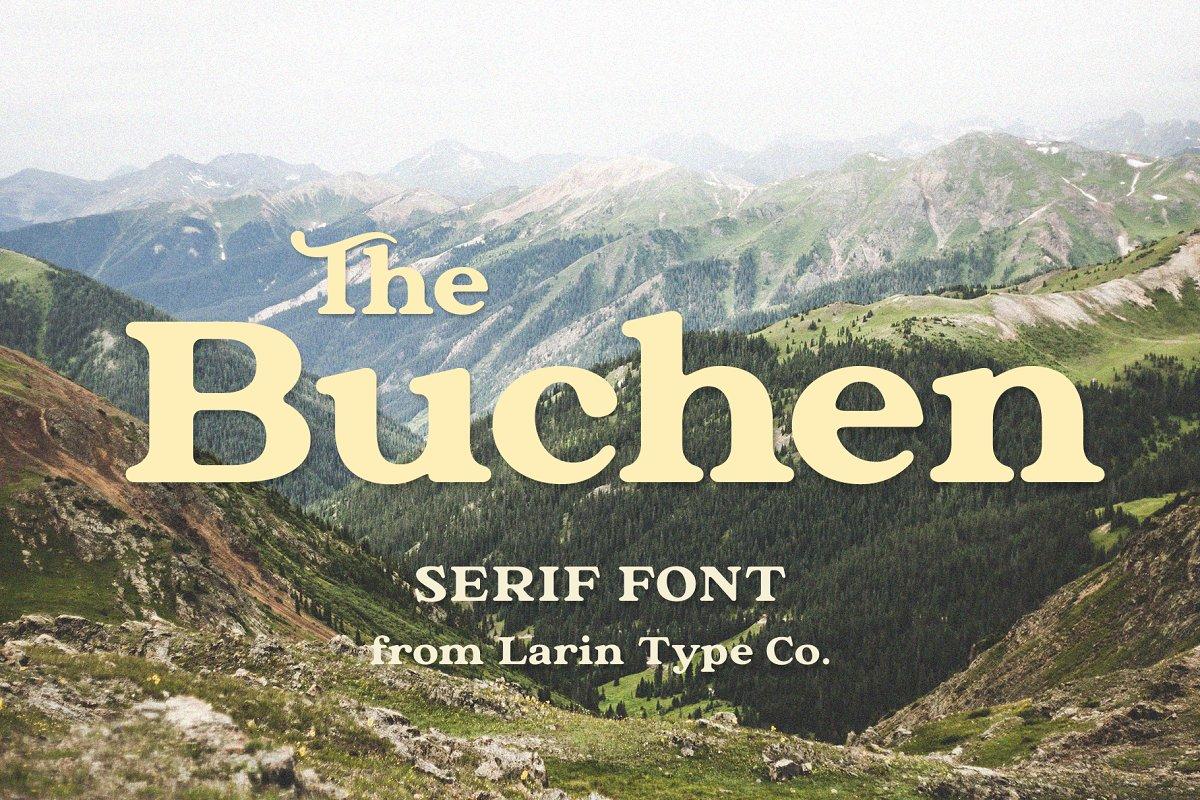 The Buchen in Serif Fonts