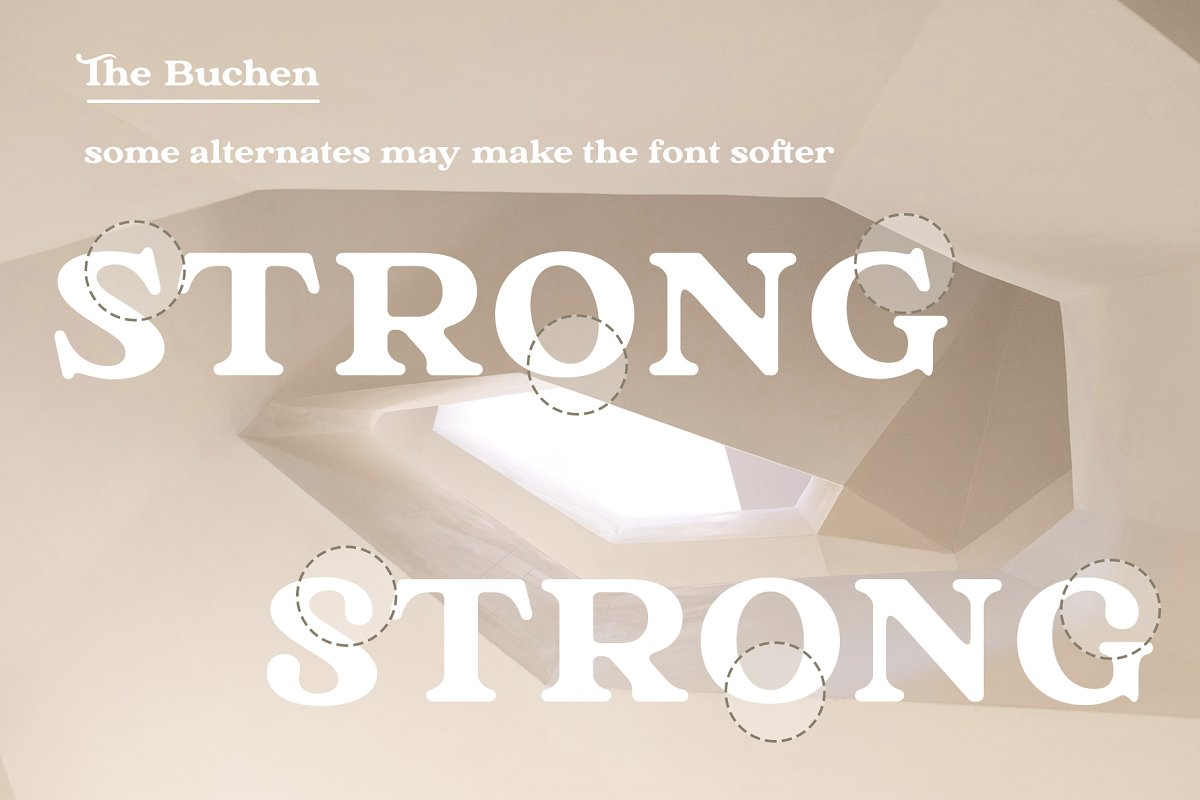 The Buchen in Serif Fonts - product preview 10