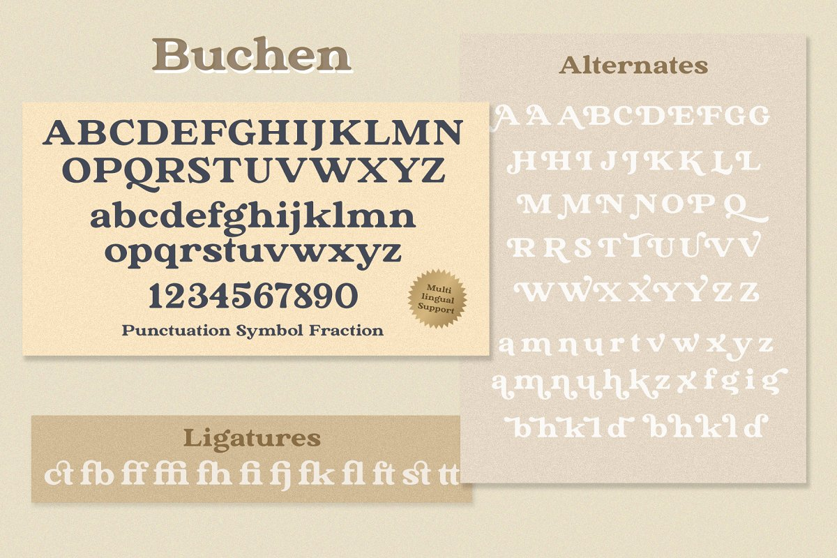 The Buchen in Serif Fonts - product preview 12