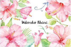 Watercolor Pink Hibiscus Clipart