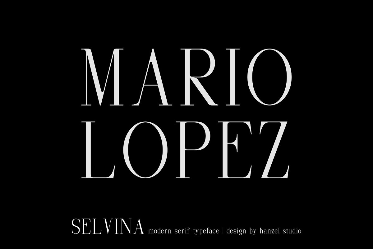 Selvina//a classic serif in Serif Fonts - product preview 2