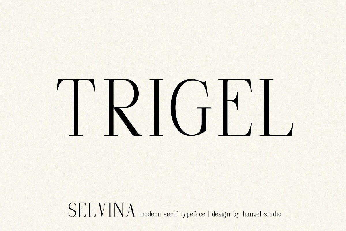 Selvina//a classic serif in Serif Fonts - product preview 3