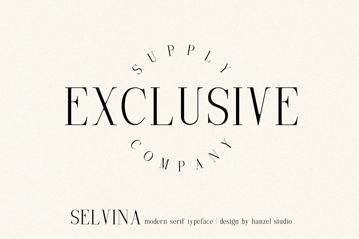 Selvina//a classic serif in Serif Fonts - product preview 5