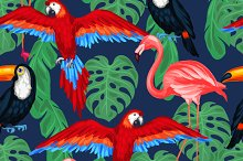 Tropical birds seamless patterns