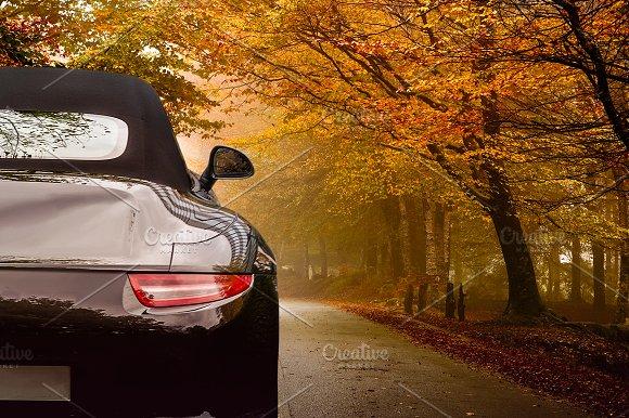 Autumn/Fall car