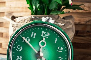 symbol of spring green clock and blo