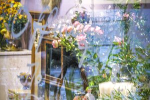 Flower Shop Window Reflection