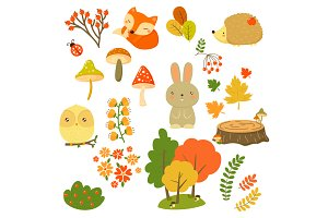 Autumn Forest Plants and Animals