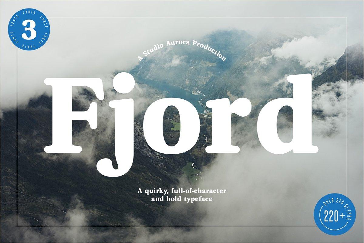 Fjord - Soft Fat Serif 20% Off