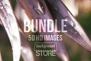 Nature Images Bundle