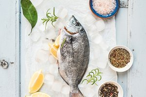 Fresh uncooked sea bream fish