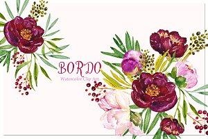 Peony Bordeaux. Watercolor Clip Art.