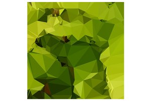 Avocado Green Abstract Low Polygon B