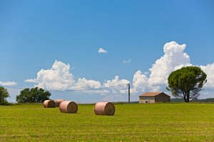 Farmland and Straw bales