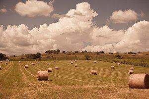 Farmland and Straw bales