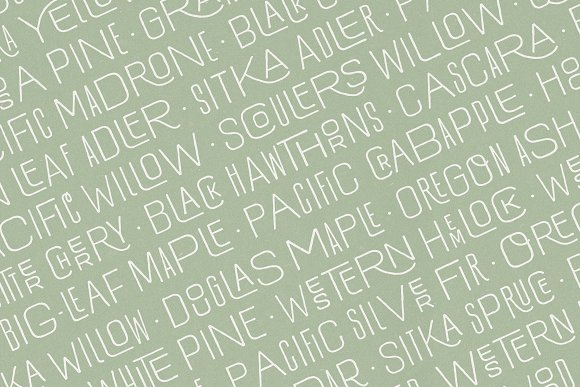 Hawkes Handmade Collection: 74% OFF in Display Fonts - product preview 8