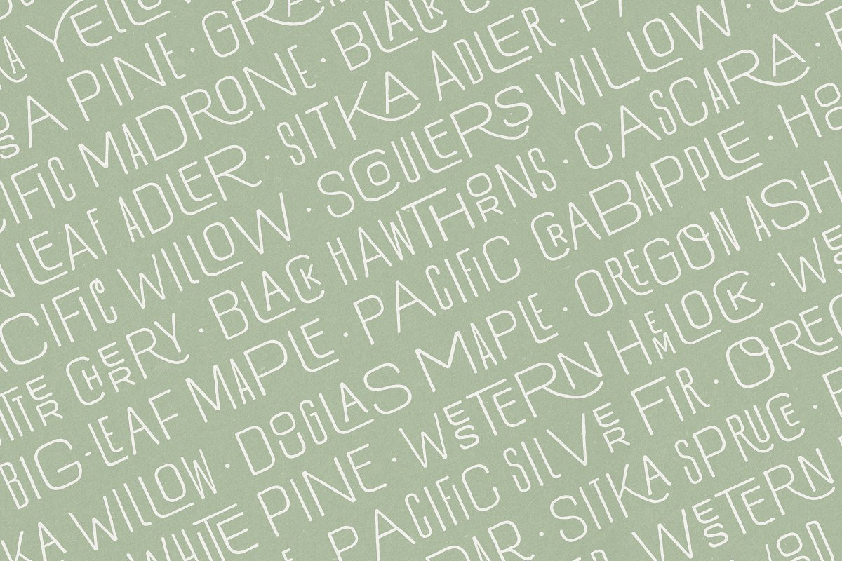 Hawkes Handmade Collection: 74% OFF in Display Fonts - product preview 10